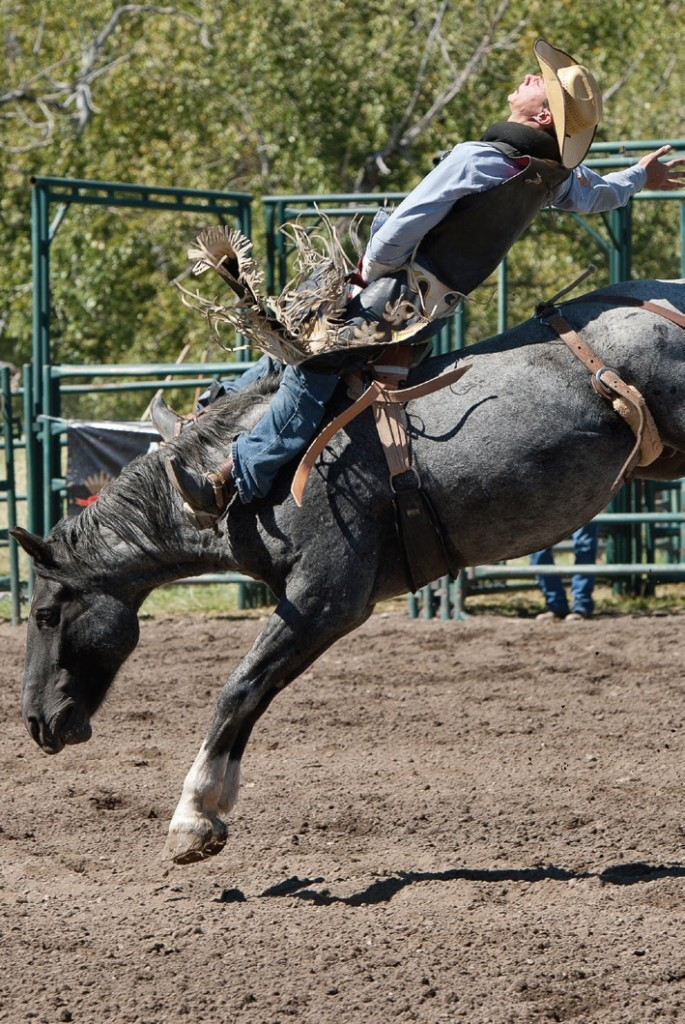 Pincher Creek rodeo - Photo Couresy of Rod Sinclair