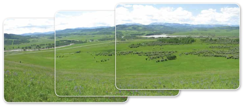 Photos taken from a SALTS conservation easements near Chain Lakes that is helping to preserve the Cowboy Trail's open spaces