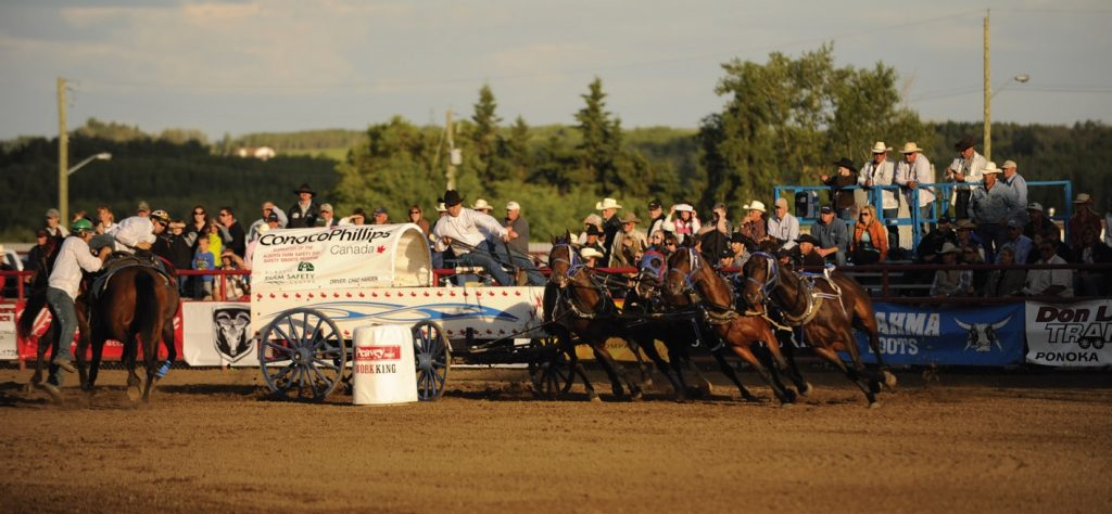 Small Town Rodeos - Photo by Allison Croteau
